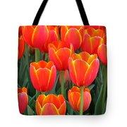 Spring Tulips 210 Tote Bag