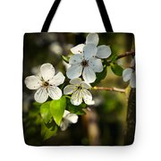 Spring Twig With White Florets Tote Bag