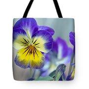 Spring Violas Tote Bag