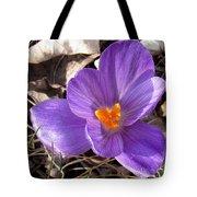 Spring Violet Tote Bag