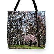 Spring Walk On Campus Tote Bag
