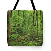 Spring Walk Tote Bag