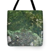 Spring Water At The Grotto Tote Bag