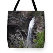 Spring Waterfall At Petit Jean Tote Bag