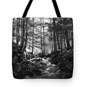 Spring Wood Tote Bag