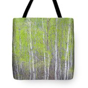 Spring Woods Tote Bag