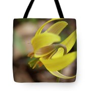 Spring Yellow Flower Tote Bag
