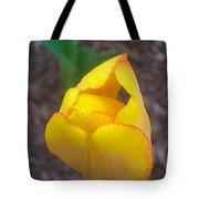 Spring Yellow Tulip Tote Bag