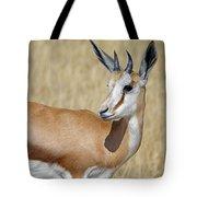 Springbok Portrait Tote Bag