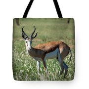 Springbuck And Butterfly Tote Bag