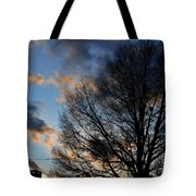 Springfield Evening 2013-02-14 Tote Bag