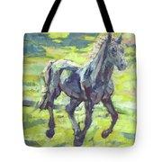 Springloaded Tote Bag