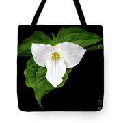 Spring's Beauty Tote Bag