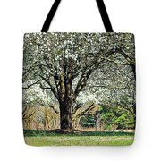 Spring's Canopy Tote Bag