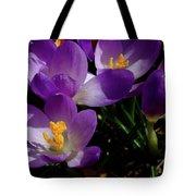 Springs First Flowers Tote Bag