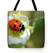 Springtime - Animals Tote Bag