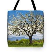 Springtime Apple Tree Panorama Tote Bag