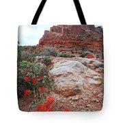 Springtime At Arches National Park Tote Bag