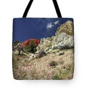 Springtime At Red Rock Canyon Tote Bag
