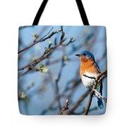 Springtime Blue Tote Bag