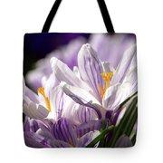 Springtime Color Tote Bag