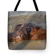 Springtime Driftwood Tote Bag