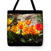 Springtime Flowers Tote Bag