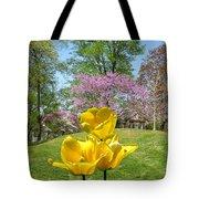 Springtime In Bridgeton Missouri Tote Bag