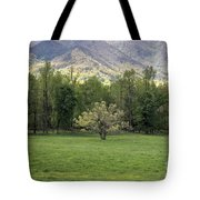 Springtime In Cades Cove Great Smoky Mountains National Park Tote Bag