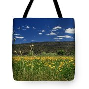 Springtime In Hat Creek Tote Bag