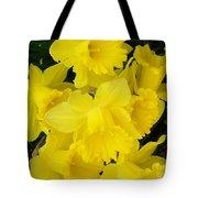 Springtime In Ireland Tote Bag