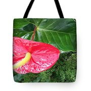 Springtime In Spokane Tote Bag