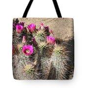 Springtime In The Desert Tote Bag