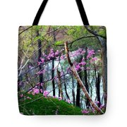 Springtime In The Mountains 2 Tote Bag