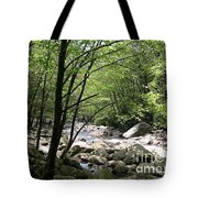 Springtime In The Smoky Mountains Tote Bag