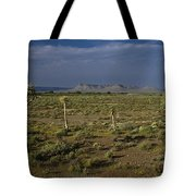 Springtime In The Western Cape Tote Bag