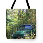 Springtime In The Woods Of Maine Tote Bag