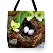 Springtime Tote Bag by Karen Wiles