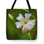Springtime Ladybug Tote Bag