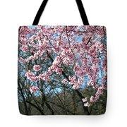 Springtime Seasonal Pink Blossom Flowers Baslee Tote Bag
