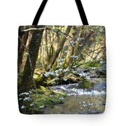 Springtime Stream In The Smokies Tote Bag