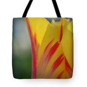 Springtime Sunset Tote Bag