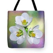 Springtime Triplets By Kaye Menner Tote Bag