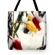 Springtime Tulips In The Snow Poster Print Tote Bag