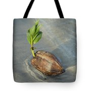 Sprouting Coconut Tote Bag