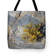 Sprouting Rock Tote Bag