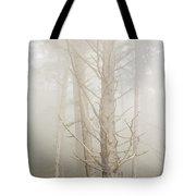 Spruce In The Fog Tote Bag