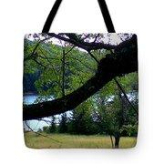 Spruce Knob Silhouette Tote Bag
