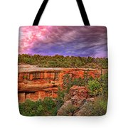 Spruce Tree House At Mesa Verde National Park - Colorado Tote Bag