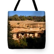 Spruce Tree House Tote Bag